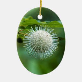 Ornement Ovale En Céramique Fleur sauvage de Bush de bouton de l'Alabama