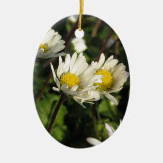 Ornement Ovale En Céramique Fleurs de marguerite blanche sur l'arrière - plan