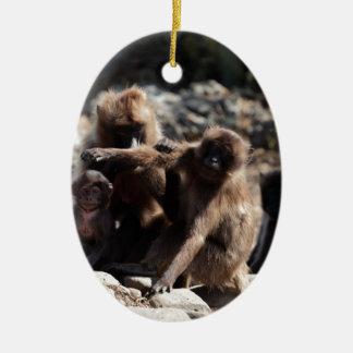 Ornement Ovale En Céramique Groupe de babouins de gelada (gelada de