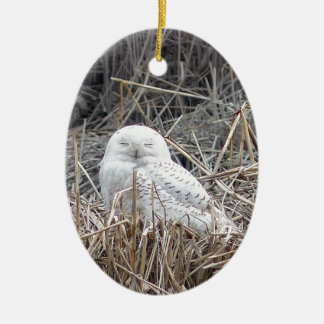 Ornement Ovale En Céramique hibou neigeux