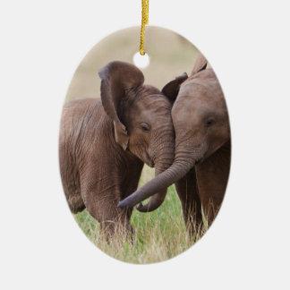 Ornement Ovale En Céramique Jeune jeu d'éléphants africains