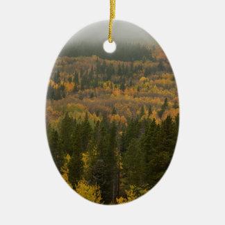 Ornement Ovale En Céramique La couleur dans le Colorado coloré