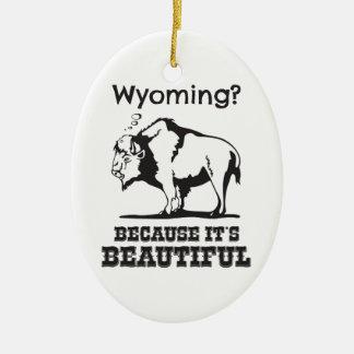 Ornement Ovale En Céramique Le Wyoming ? Puisqu'il est beau