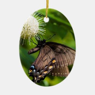 Ornement Ovale En Céramique Machaon femelle foncé de tigre sur le fleur