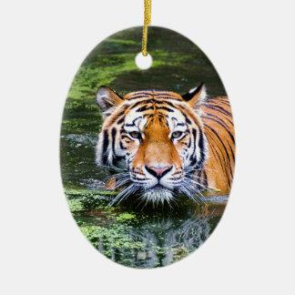 Ornement Ovale En Céramique Natation de tigre