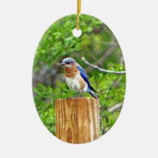 Ornement Ovale En Céramique Oiseau bleu sur un courrier de barrière