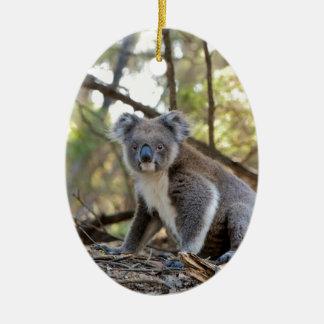 Ornement Ovale En Céramique Ours de koala gris et blanc