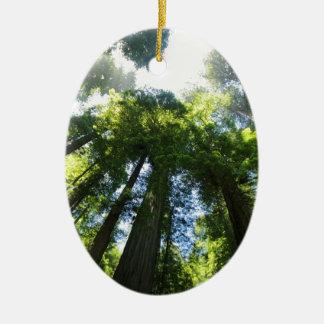 Ornement Ovale En Céramique Parc national de séquoia
