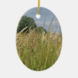 Ornement Ovale En Céramique Paysage d'été de champ sauvage dans la campagne
