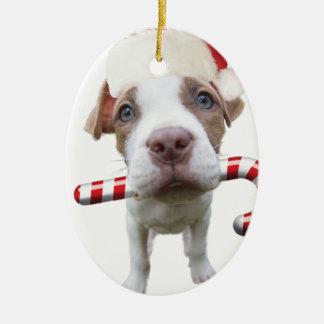 Ornement Ovale En Céramique Pitbull de Noël - pitbull de père Noël - chien de