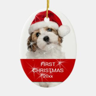 Ornement Ovale En Céramique Première photo personnalisée de Noël d'animal