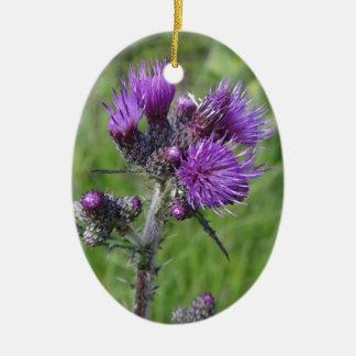 Ornement Ovale En Céramique purple thistle