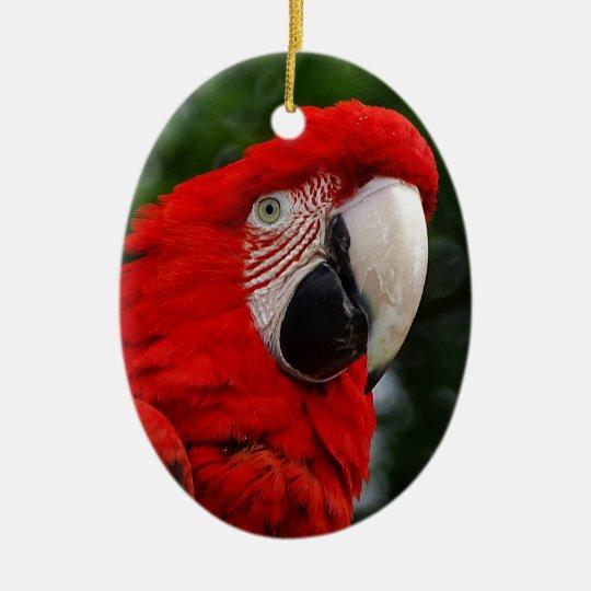 Ornement Ovale En Céramique Red Macaw