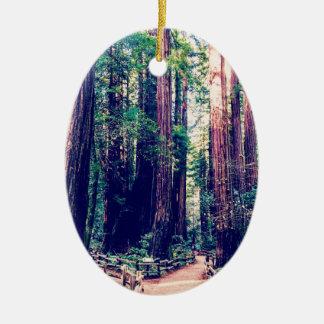 Ornement Ovale En Céramique Séquoias de Californie