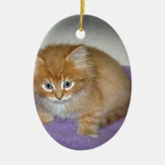 Ornement Ovale En Céramique Tache sur ce chaton