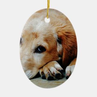 Ornement Ovale En Céramique Tan et chien court blanc de manteau