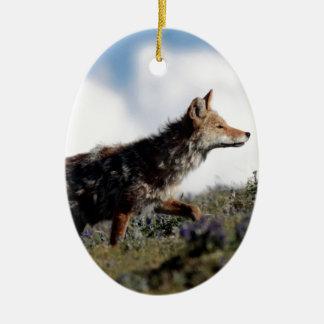 Ornement Ovale En Céramique Un coyote marche en parc national de Yellowstone,
