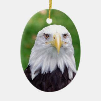 Ornement Ovale En Céramique Yeux d'Eagle chauve