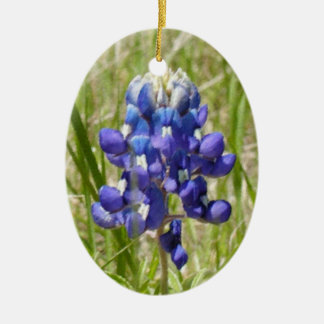 Ornement peint de Bluebonnet de Texas