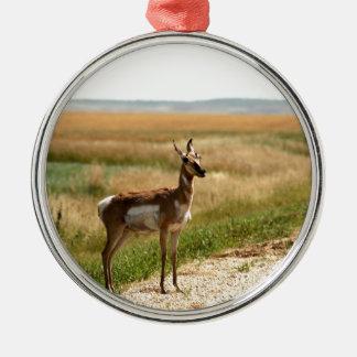 Ornement Rond Argenté Antilope de Pronghorn de prairie