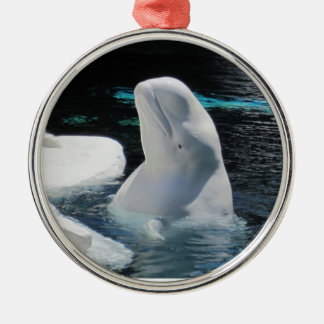 Ornement Rond Argenté Belle baleine blanche de beluga
