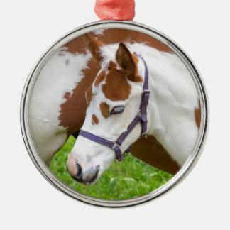 Ornement Rond Argenté Brun blanc de poulain nouveau-né avec horse.JPG