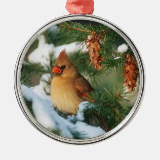 Ornement Rond Argenté Cardinal du nord dans l'arbre, l'Illinois