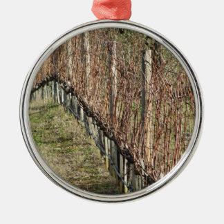 Ornement Rond Argenté Champ nu de vignoble en hiver. La Toscane, Italie