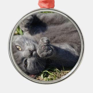 Ornement Rond Argenté chaton mignon !