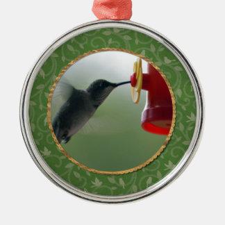 Ornement Rond Argenté Colibri au conducteur dans le rond, oiseaux sur