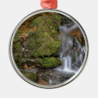 Ornement Rond Argenté Écoulement d'eau vert et moussu