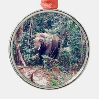 Ornement Rond Argenté Éléphant en Thaïlande
