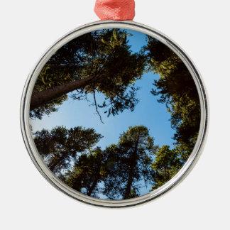 Ornement Rond Argenté Étoile de forêt