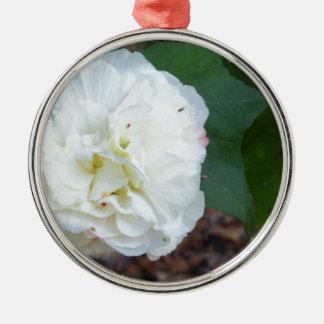 Ornement Rond Argenté fleur blanche de mutabilis de ketmie