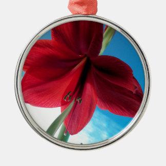 Ornement Rond Argenté fleur rouge vive de l'amaryllis 108a