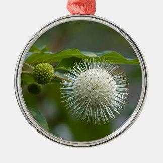Ornement Rond Argenté Fleur sauvage blanc de Buttonbush