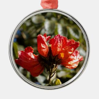 Ornement Rond Argenté Fleurs d'un tuliptree africain