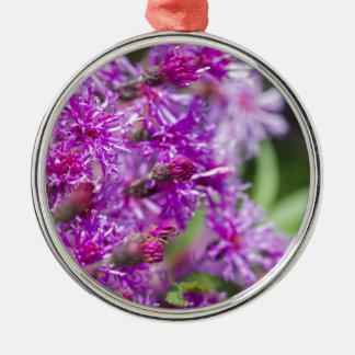 Ornement Rond Argenté Fleurs sauvages grands d'herbe de Saint-Jacques