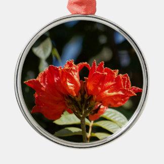 Ornement Rond Argenté iFlowers d'un tuliptree africain