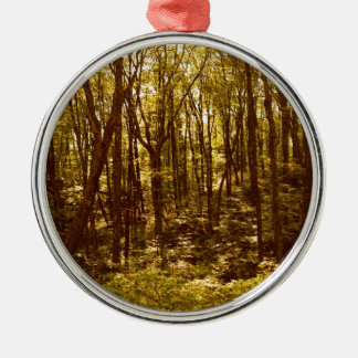 Ornement Rond Argenté La forêt montre du doigt
