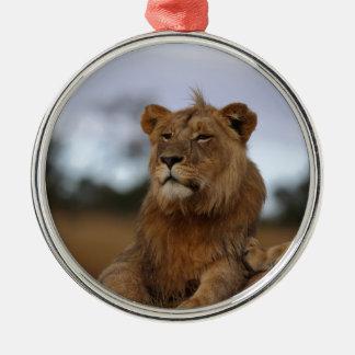 Ornement Rond Argenté lion