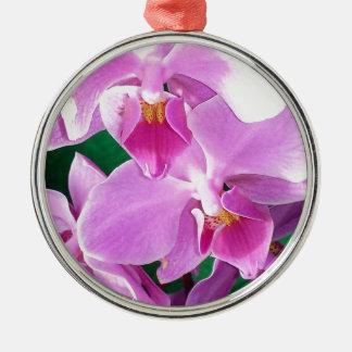 Ornement Rond Argenté L'orchidée fleurit plan rapproché dans le rose