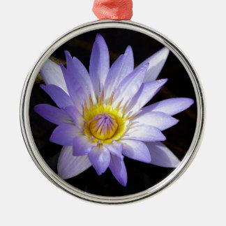 Ornement Rond Argenté lotus bleu du Nil
