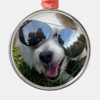 Ornement Rond Argenté Lunettes de soleil l'AVENIR LUMINEUX de chien pour