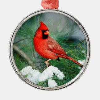 Ornement Rond Argenté Mâle cardinal du nord sur l'arbre, IL