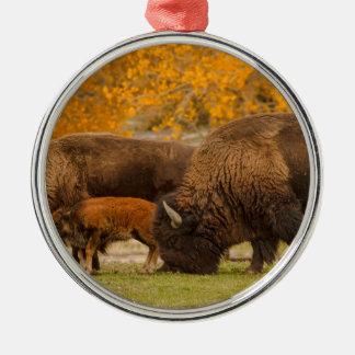 Ornement Rond Argenté Nation de famille de bison