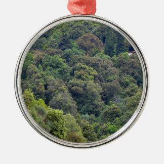 Ornement Rond Argenté Nature de collines vertes