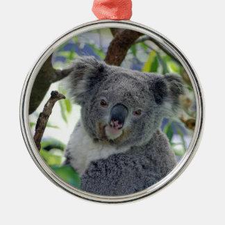 Ornement Rond Argenté Ours de koala dans un arbre
