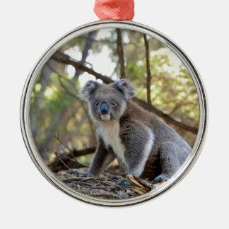 Ornement Rond Argenté Ours de koala gris et blanc
