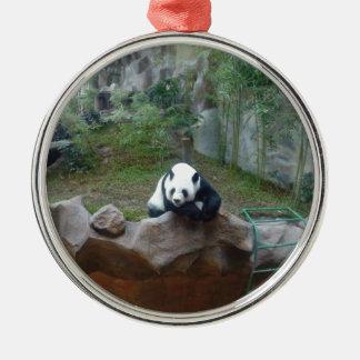 Ornement Rond Argenté Ours panda